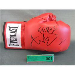 Autographed Fernando Vargas Everlast Boxing Glove