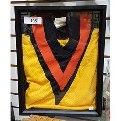 VINTAGE HOCKEY JERSEY IN SHADOW BOX