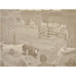 "Greytak, Don framed print, Bull In The Havre, MT sales ring, 10""x 14"","
