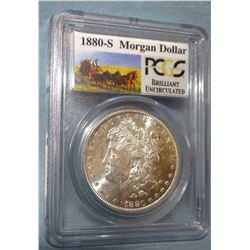 2 Morgan dollars: 1881 O NCGS MS 65 and 1880 S PCGS BU