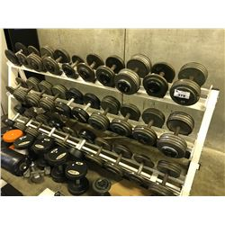LARGE LOT OF FREE WEIGHTS AND RACK