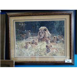 FRAMED LIMITED EDITION 560/1500 LION PRIDE PRINT SIGNED BOTTOM LEFT