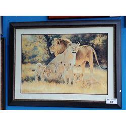 FRAMED LION PRIDE PRINT SIGNED BOTTOM LEFT