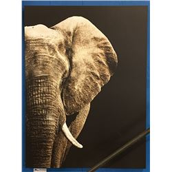 ELEPHANT ART PRINT ON CANVAS DECORATIVE WALL HANGING 3' X 4'