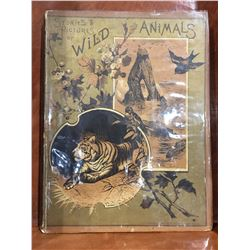 1879 STORIES & PICTURES OF WILD ANIMALS