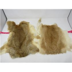 LOT OF 2 RABBIT PELTS (BROWN & WHITE) *NICE COLORS*