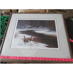 "DUCKS UNLIMITED PRINT ""MATES - CANADA GEESE"""