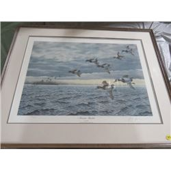 "FRAMED PRINT (NOVEMBER BLUEBILLS) *BUZZ BLAZER* (35"" X 28.5"""