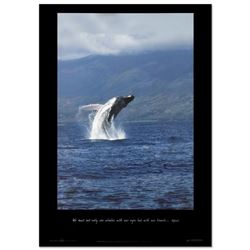 Whale Flight - Maui by Wyland