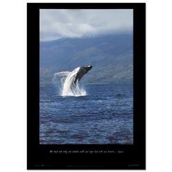 Whale Flight - Maui by Wyland