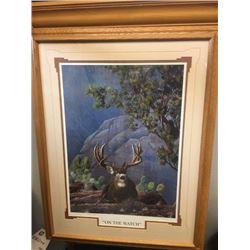 On The Watch Mule Deer Print