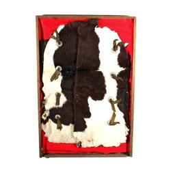 Framed Montana Cowhide & Concho Cowboy Chaps