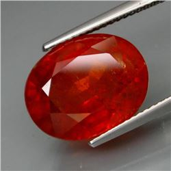 Natural BIG  Spessartite Garnet 12.35 cts -no Treatment