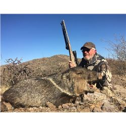 Arizona, USA - 1 Hunter for 3-Day Javelina Hunt