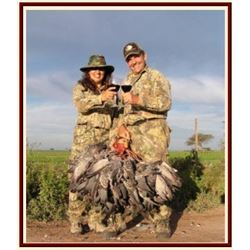 Cordoba, Argentina - 4 Hunters for 4 Days of High-Volume Dove Shooting