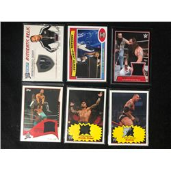 WWE INSERT RELIC CARD LOT