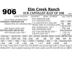 ECR CAPITALIST 822F OF 50B