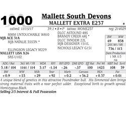 MALLETT EXTRA E237