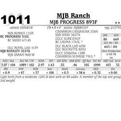MJB PROGRESS 893F