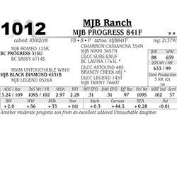 MJB PROGRESS 841F