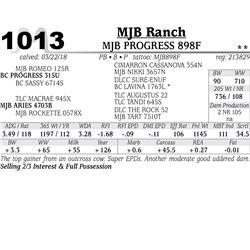 MJB PROGRESS 898F
