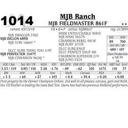 MJB FIELDMASTER 861F