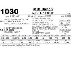 MJB FLINT 883F