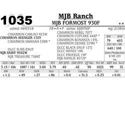 MJB FORMOST 930F