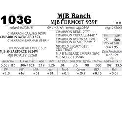 MJB FORMOST 939F