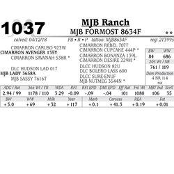 MJB FORMOST 8634F