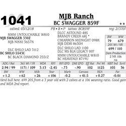 BC SWAGGER 859F