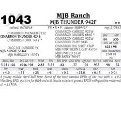 MJB THUNDER 942F