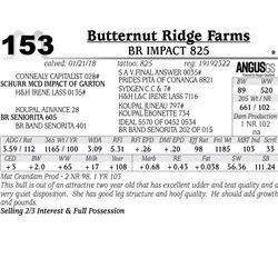 BR Impact 825