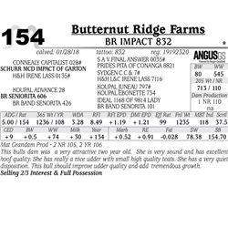 BR Impact 832