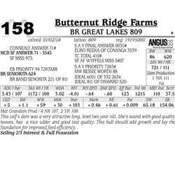 BR Great Lakes 809