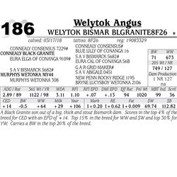 Welytok Bismar BlGranite8F26