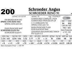 Schroeder Reno 91