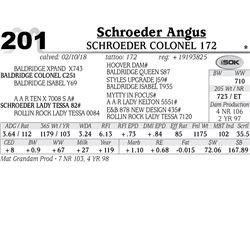 Schroeder Colonel 172