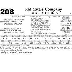 KM Brigadier 8205