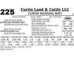 Curtin Manning 8093