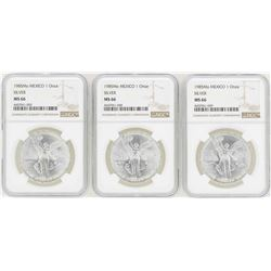 Lot of (3) 1985Mo 1 Onza Silver Libertad Coins NGC MS66