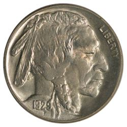 1929 Buffalo Nickel Coin