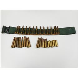 LONG RIFLE AMMO ASSORTED, BLANKS, BRASS