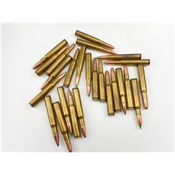 30-06 ASSORTED AMMO