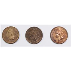 1905, 1906 AND 1902 INDIAN CENTS