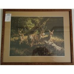 """FRAMED ART """"GOLDEN TROUT LAKE"""" BY BARB PEETS #65/500"""