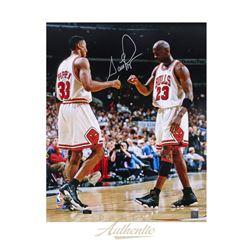 Scottie Pippen Signed LE Bulls 16x20 Photo (Panini COA)