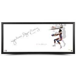 """Julius """"Dr. J"""" Erving Signed Nets """"The Show"""" 20x46 Custom Framed Display (UDA COA)"""