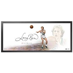 "Larry Bird Signed Celtics ""The Show"" 20x46 Custom Framed Display (UDA COA)"