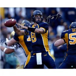 Aaron Rodgers Signed California Golden Bears 16x20 Photo (Steiner COA)